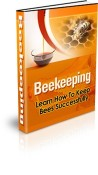 How to be a Beekeeper