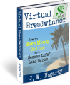 Virtual Breadwinner - Complete Three Book Set