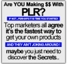 Complete PLR Mastery